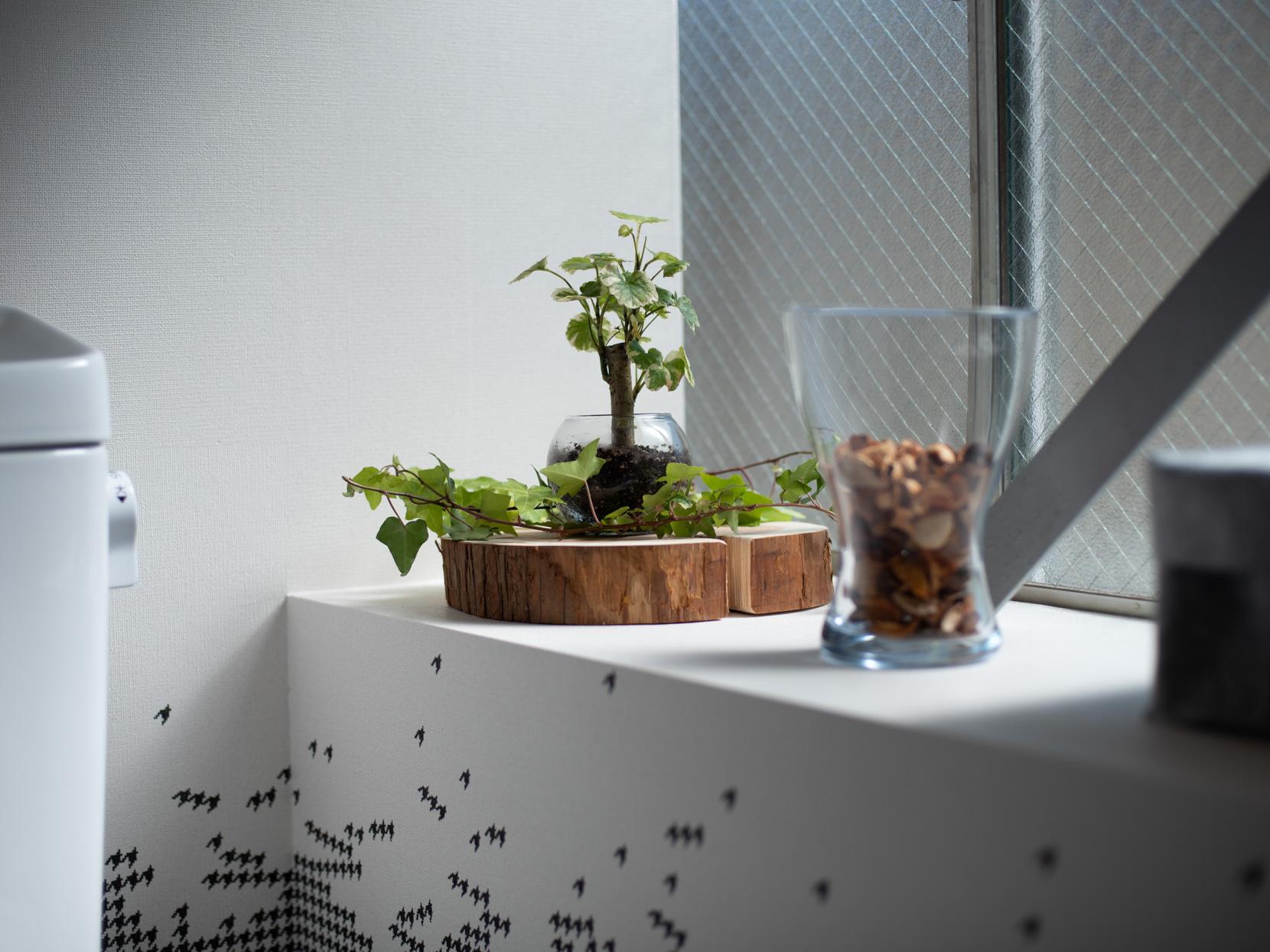 トイレのインテリアグリーン