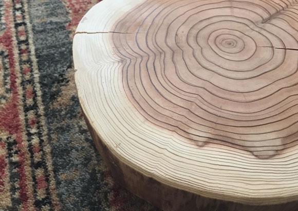 木のもつ癒しの「ゆらぎ」リズム